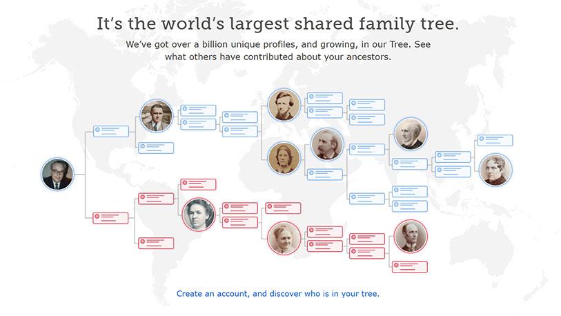 Find Your Ancestors